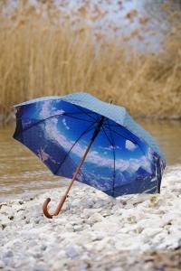 paraguas doble tela interior foto paisaje