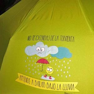paraguas misterwonderful